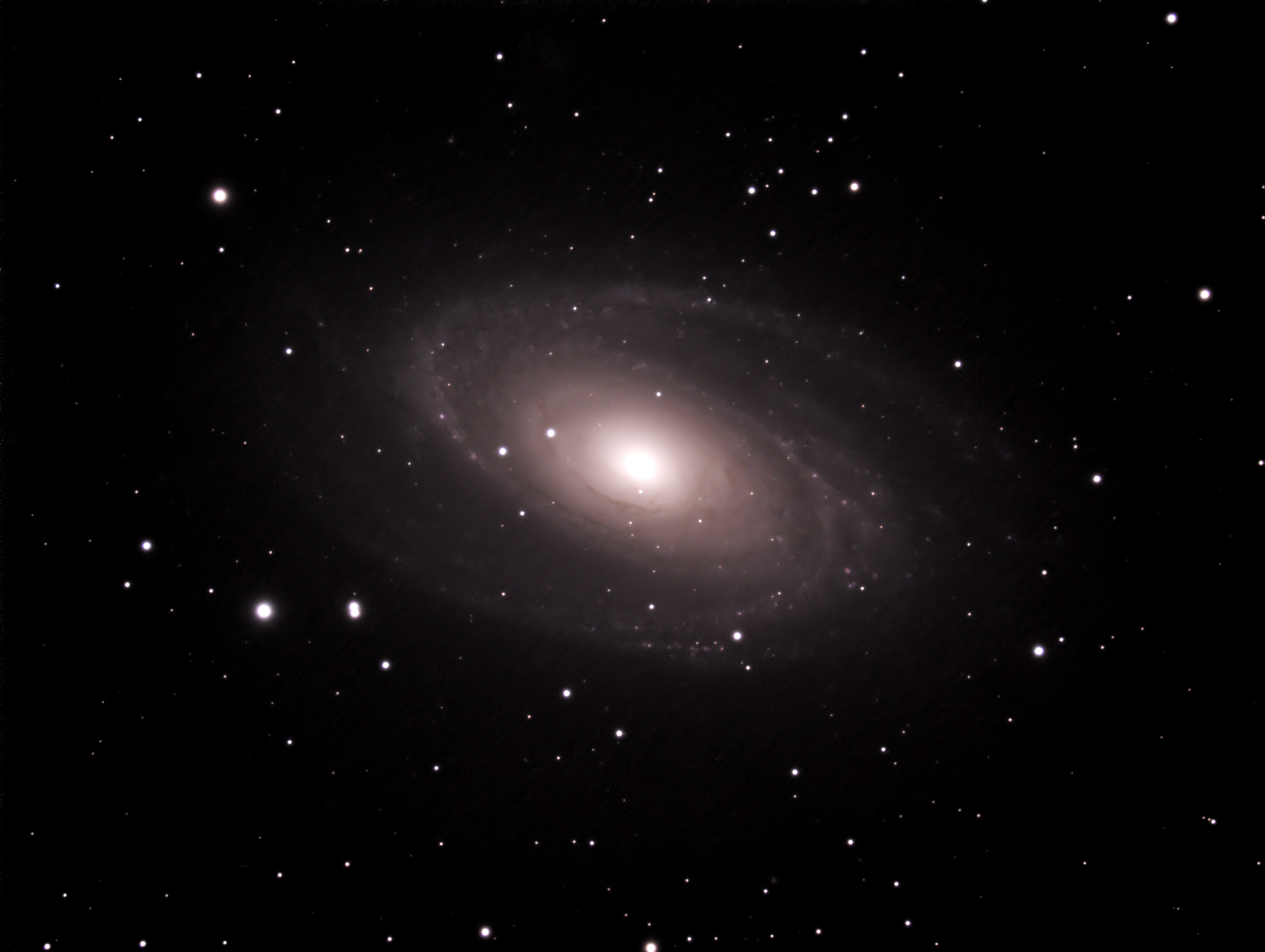 "M81 imaged with an 11"" EdgeHD SCT and a Nightscape NS8300 OSC camera"
