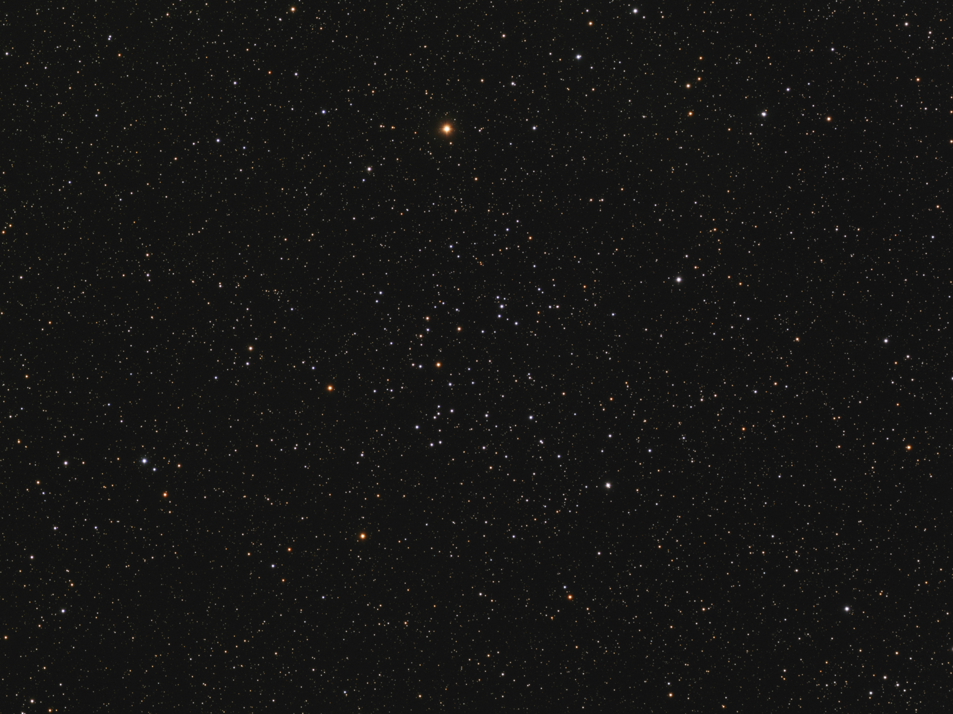 NGC 7209 - Cluster in Lacerta